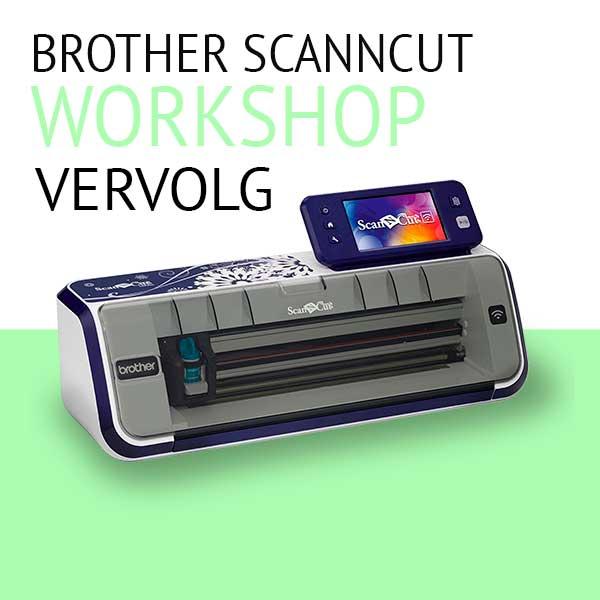 workshop-scanncut-vervolg