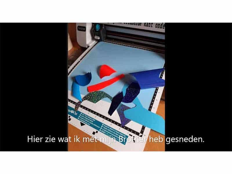 Flex-vis-maken_0021_Knipsel 25